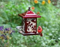 Homestead Hummingbird Jolly Pop Red Bird Feeder