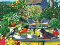Outset Media Games Bird Bath 500 piece Puzzle