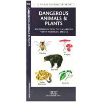 Steven M. Lewers Land Mammals Of The Northeast