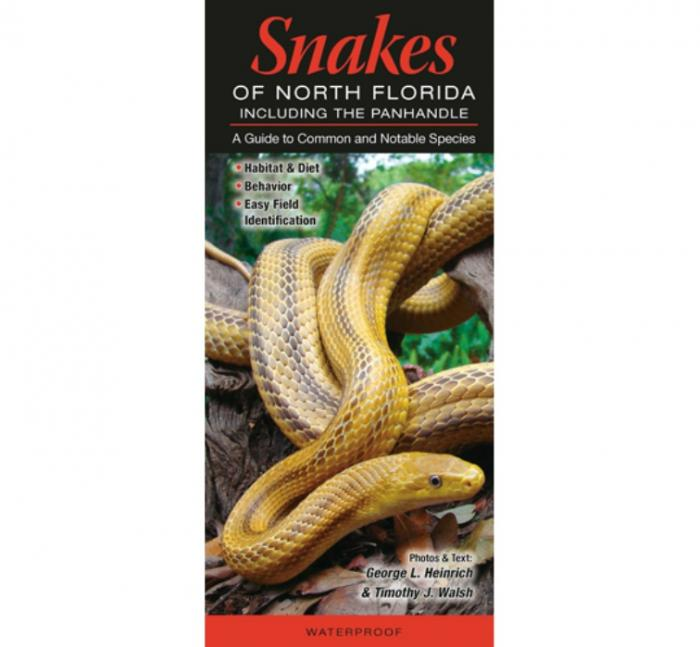 Quick Reference Publishing Snakes of Northern Florida