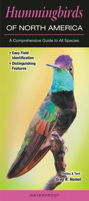 Quick Reference Publishing Hummingbirds of North America