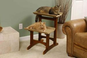 Scratching Posts by Mr. Herzher's