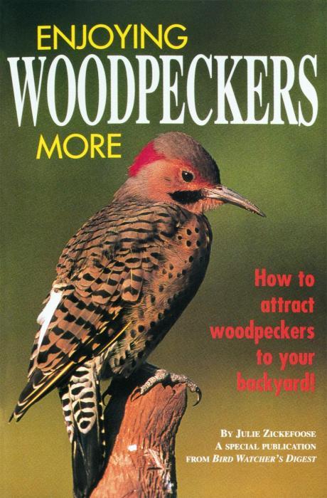 Bird Watcher's Digest Enjoying Woodpeckers More