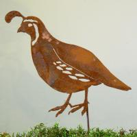 Elegant Garden Design CA Quail Male Stake Bird Silhouette
