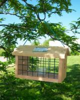 Songbird Essentials Protected Bluebird Jail Bird Feeder