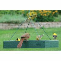 Woodlink Audubon Series Going Green Platform Bird Feeder
