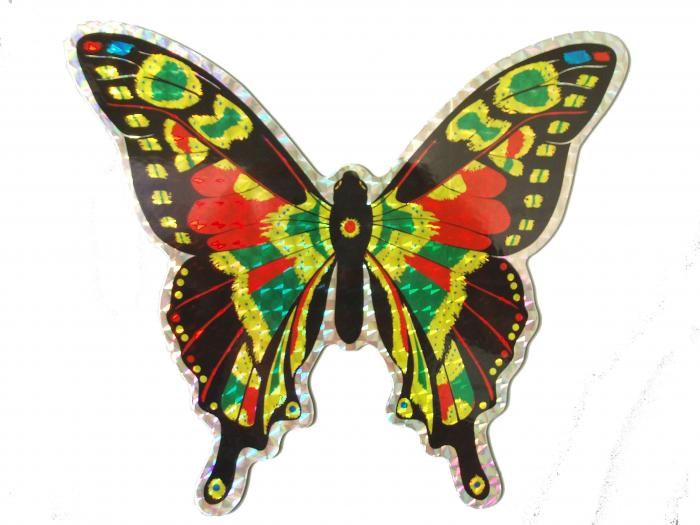 The Clark Collection Large Multi Colored Butterfly Door Screen Saver