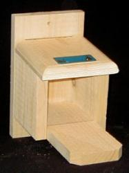 Squirrel Houses & Feeders by Coveside Conservation Products