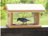 Birds Choice Bluebird Feeder