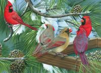 Outset Media Games Cardinal Gathering 1000 piece Puzzle