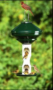 House / Hopper Bird Feeders by Vari-Crafts