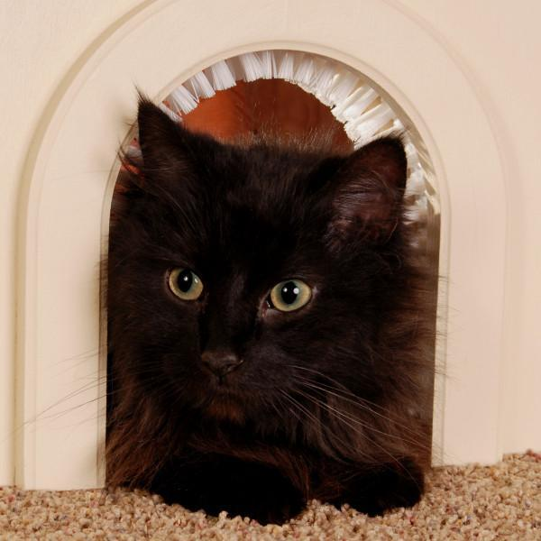 Cathole Pet Door For Cats With Removeable Brush