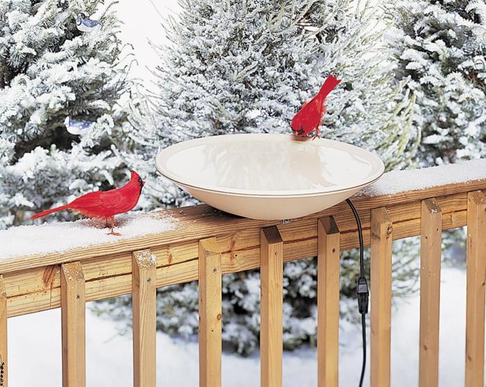 Allied Precision Heated Bird Bath