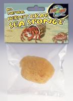 Hermit Crab Sea Sponge