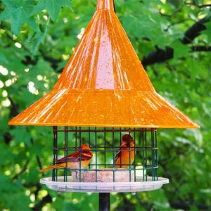 Oriole Feeders by Arundale