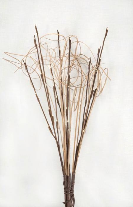 Mark Feldstein LED Light Branches Curly Ting
