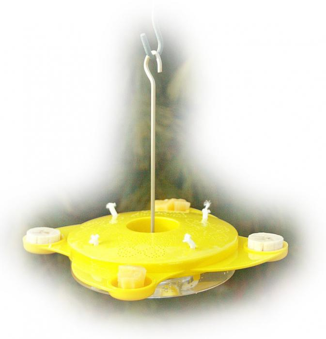 Woodlink Butterfly Feeder