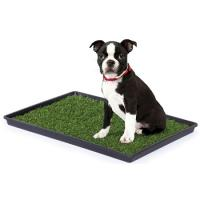 Tinkle Turf - Small