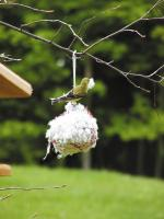 Birds Choice Cottontail Nest Building Ball