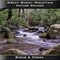 Peaceful Valley Productions Great Smoky Mountain Birds & Creek CD