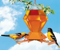Perky Pet Hex Oriole Bird Feeder with Bee Guards