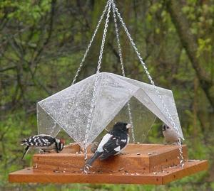 Songbird Essentials 12 x 12 Super Tray w Cover Bird Feeder