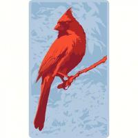 Wellspring Screen Cleaner - Cardinal