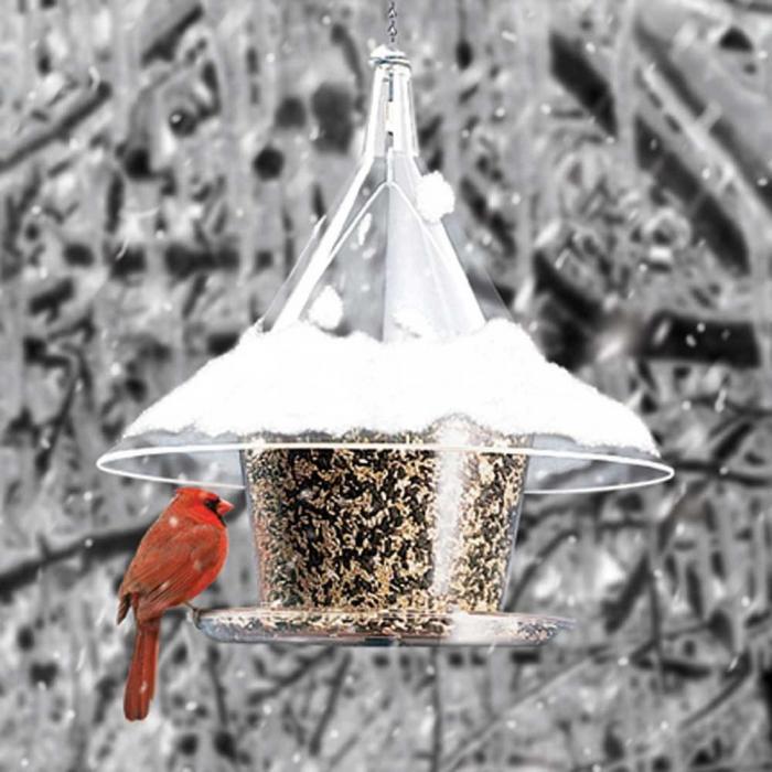 Arundale Mandarin SkyCafe Bird Feeder