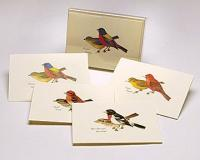 Steven M. Lewers & Associates Peterson Bird Notecard Assortment II (2 each of 4 styles)
