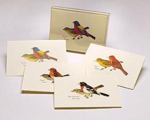 Steven M. Lewers & Associates Peterson Bird Notecard Assortment II (2 each of 4 styles)