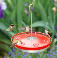 Aspects HighView Excel Hummingbird Feeder