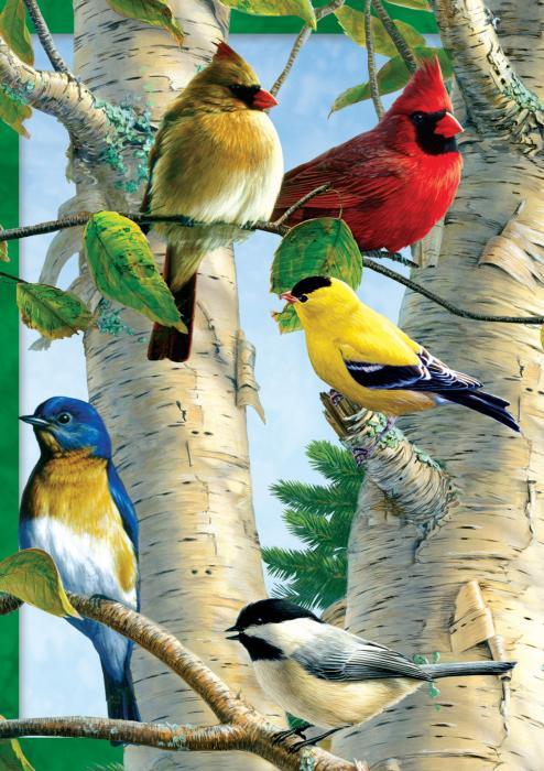 Tree Free Greetings Favorite Songbirds Blank